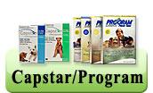 Capstar Program