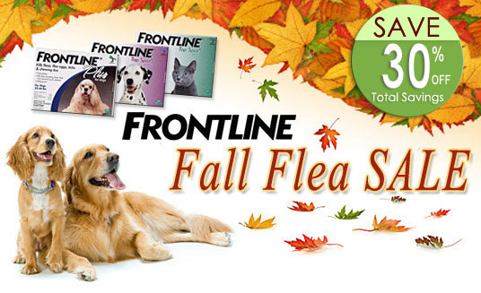 Frontline Fall Flea Sale