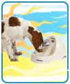 Petmate Deluxe Fresh Flow Pet Fountain - Medium