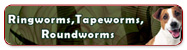 Ringworms, Tapeworms, Roundworms