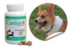 Caniox-R Antioxidant Tablets